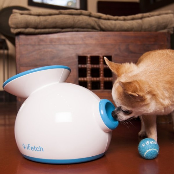 iFetch e1396255146859 iFetch Interactive Ball Launcher   because your dog needs a best friend too